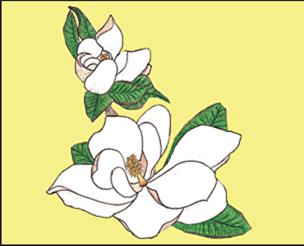 emmas_place_franklin_north_carolina_logo